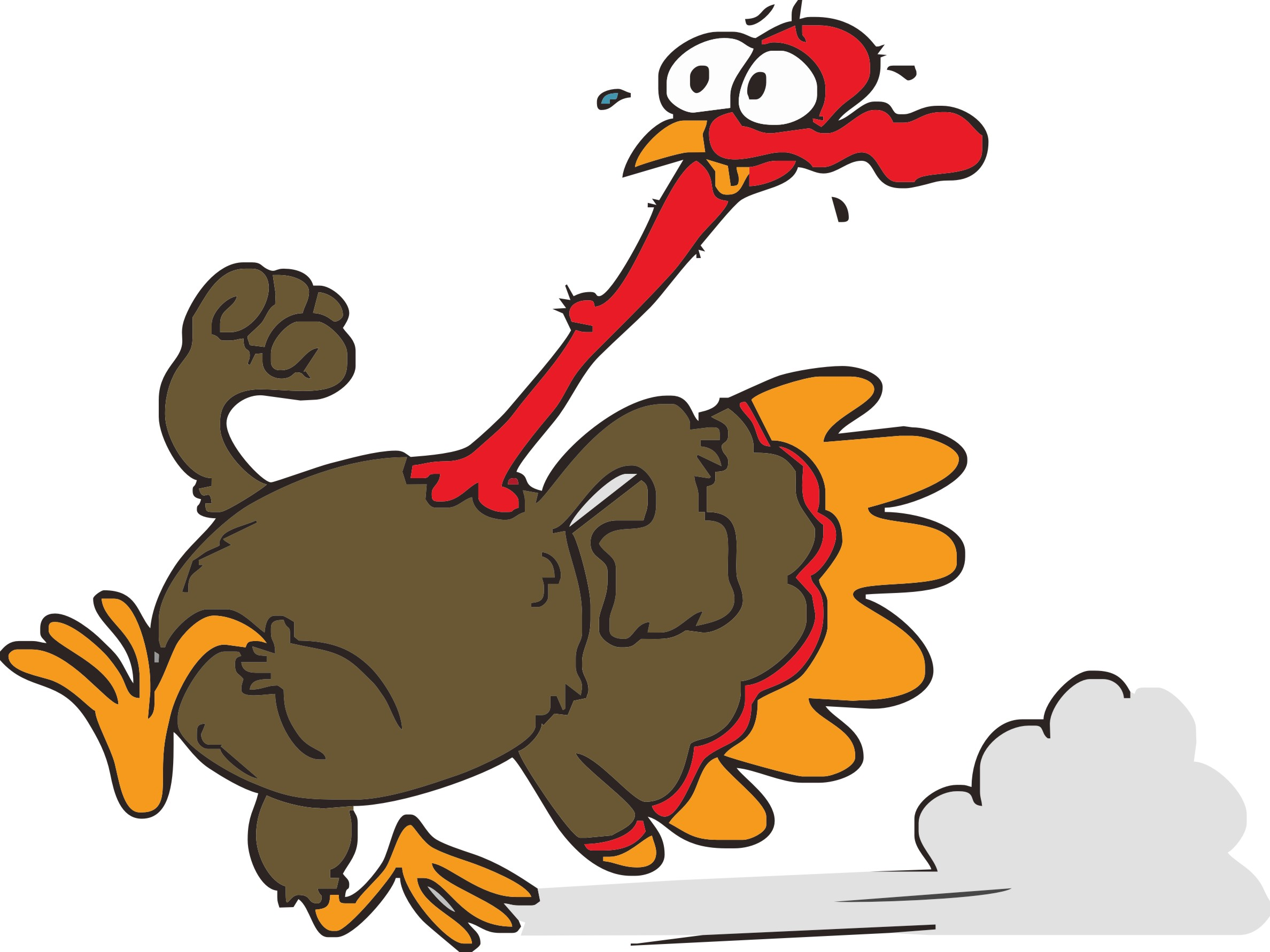Waynesboro family ymca s turkey gobbler trot